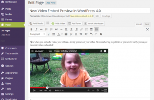 Video Embed Preview WordPress 4.0