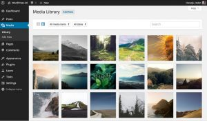 Media Library Grid Layout